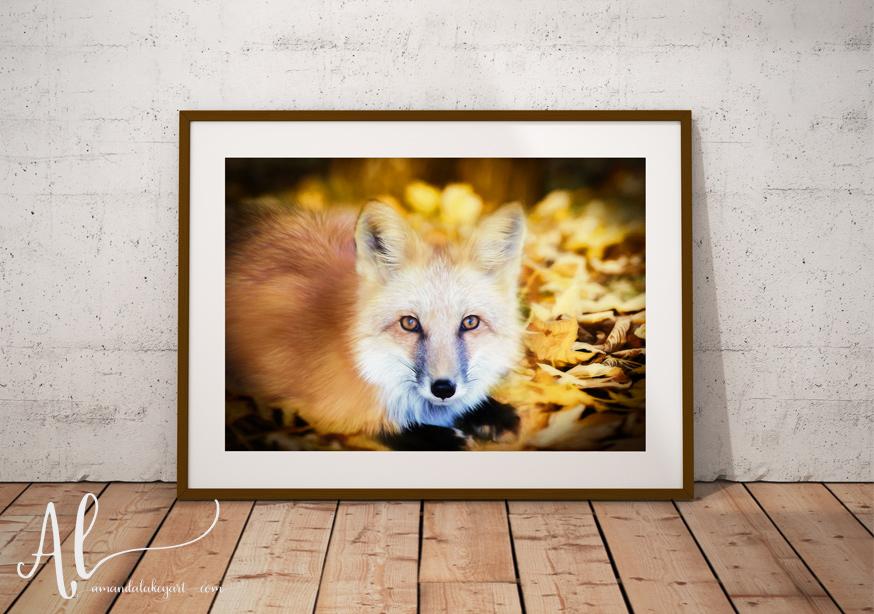 Autumn-Fox-Product-AmandaLakeyArt.com
