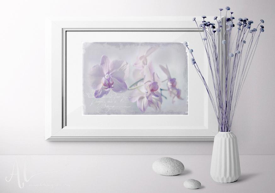 Orchid-Dreams-Example-AmandaLakeyArt.com