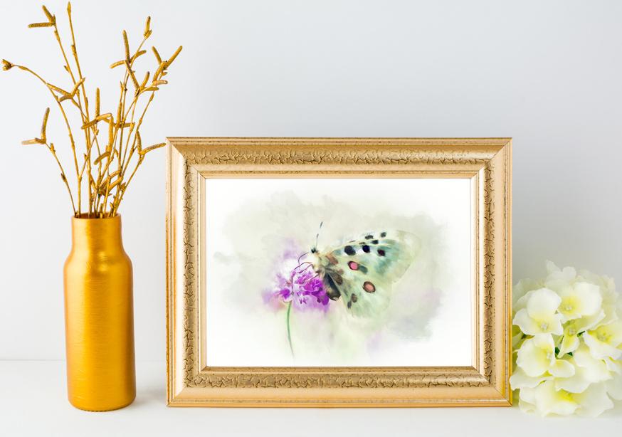Sweet-Butterfly-Nectar-Amanda-Lakey