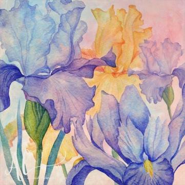 Angel-Iris-Amanda-Lakey