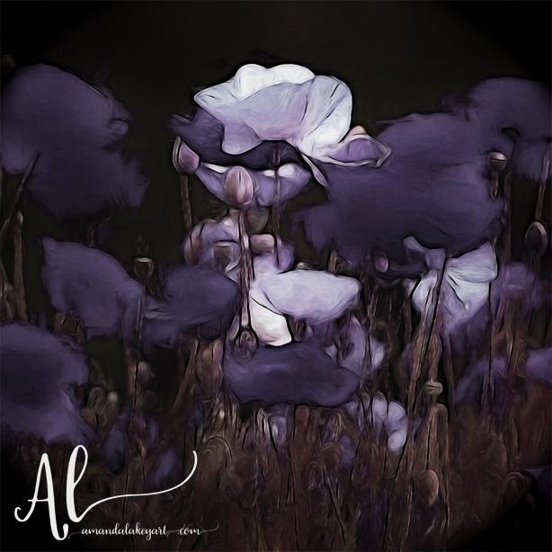By-Moonlight-Amanda-Lakey