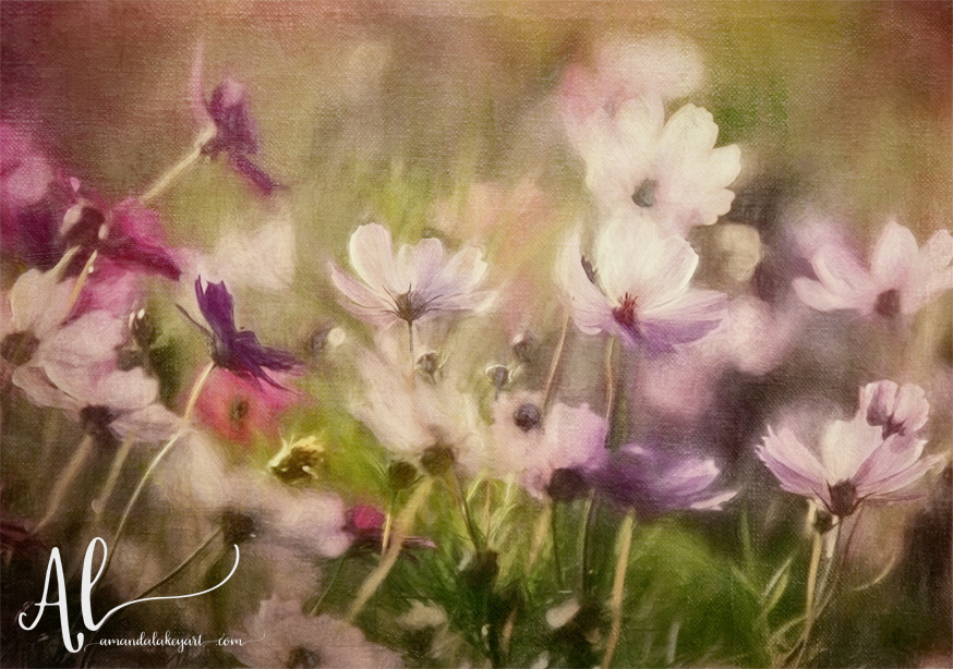 Flower-Meadow-AmandaLakeyArt.com