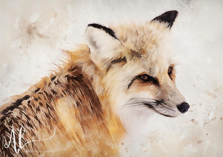 Painted-Fox-Amanda-Lakey