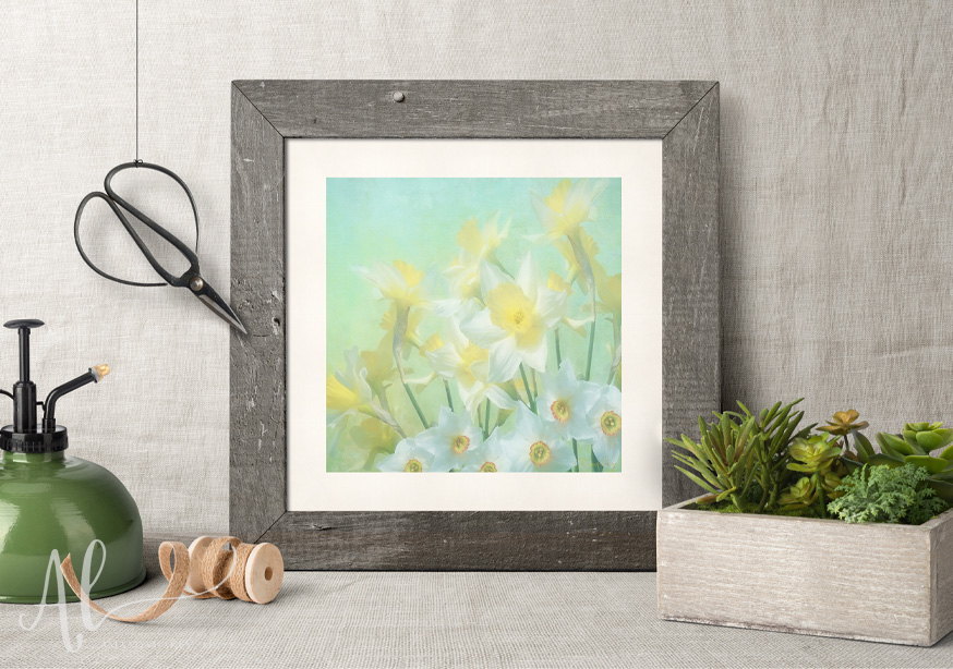 Spring-Daffodils-Amanda-Lakey-Country-Framed