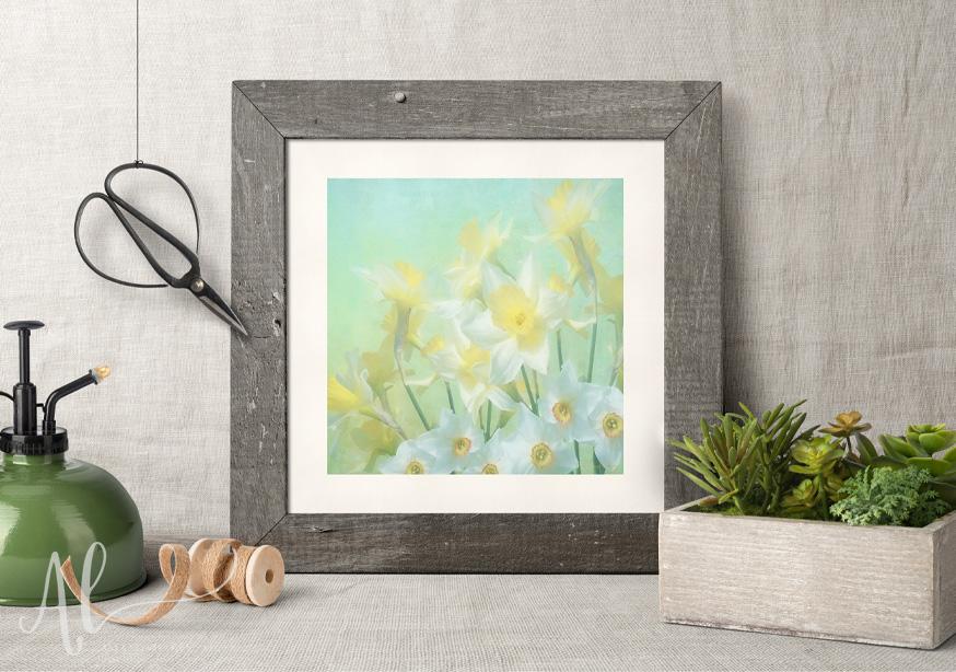 Spring-Daffodils-Amanda-Lakey-Country-Framed